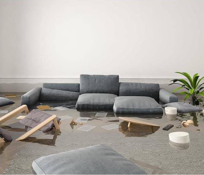 Why SERVPRO We Are The Experts & We Are Here To Help  |  Identifying Floodwaters