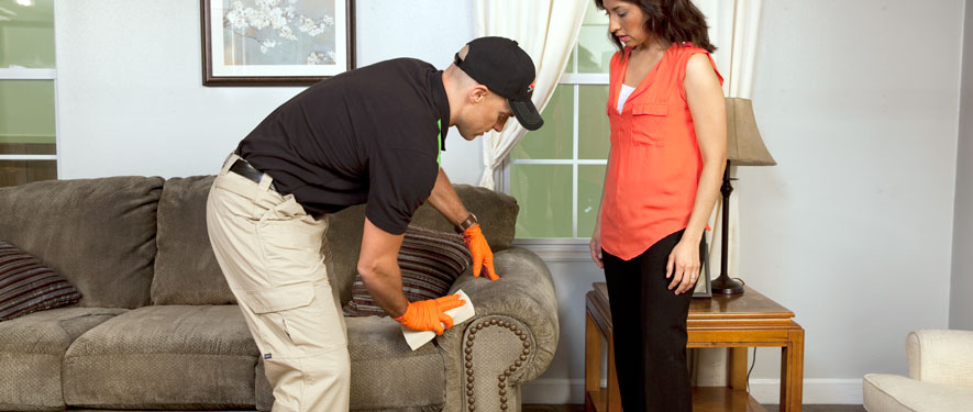 Westfield, NJ carpet upholstery cleaning