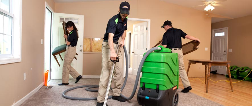 Westfield, NJ cleaning services