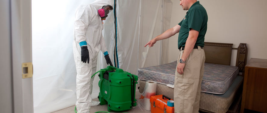 Westfield, NJ mold removal process